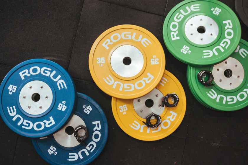 several rogue gym plates